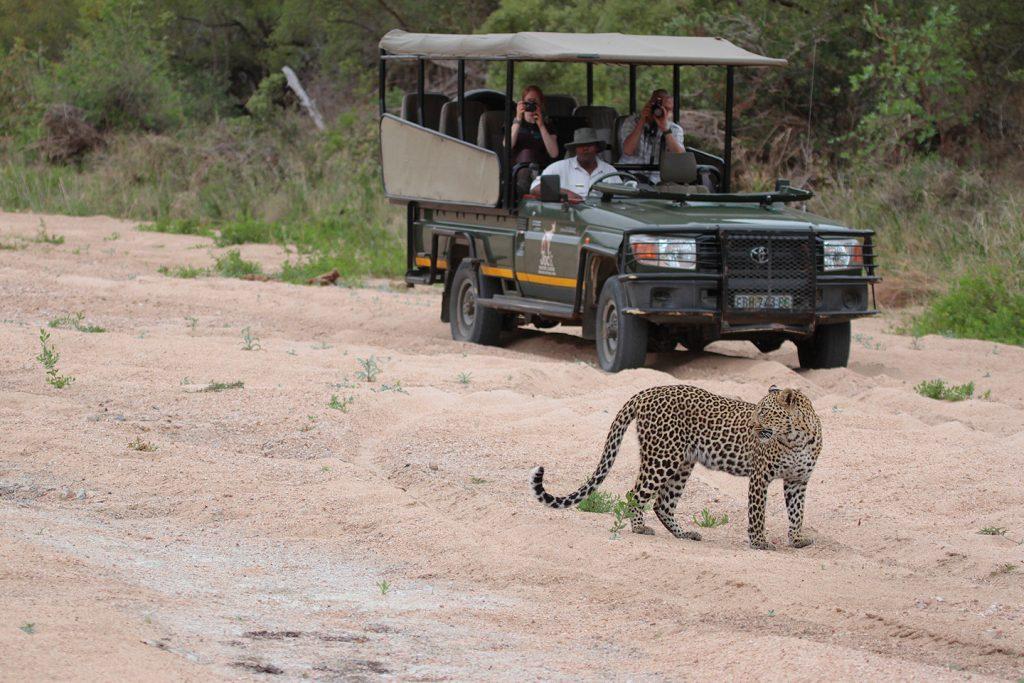 Tours & Safaris - Discovering Africa