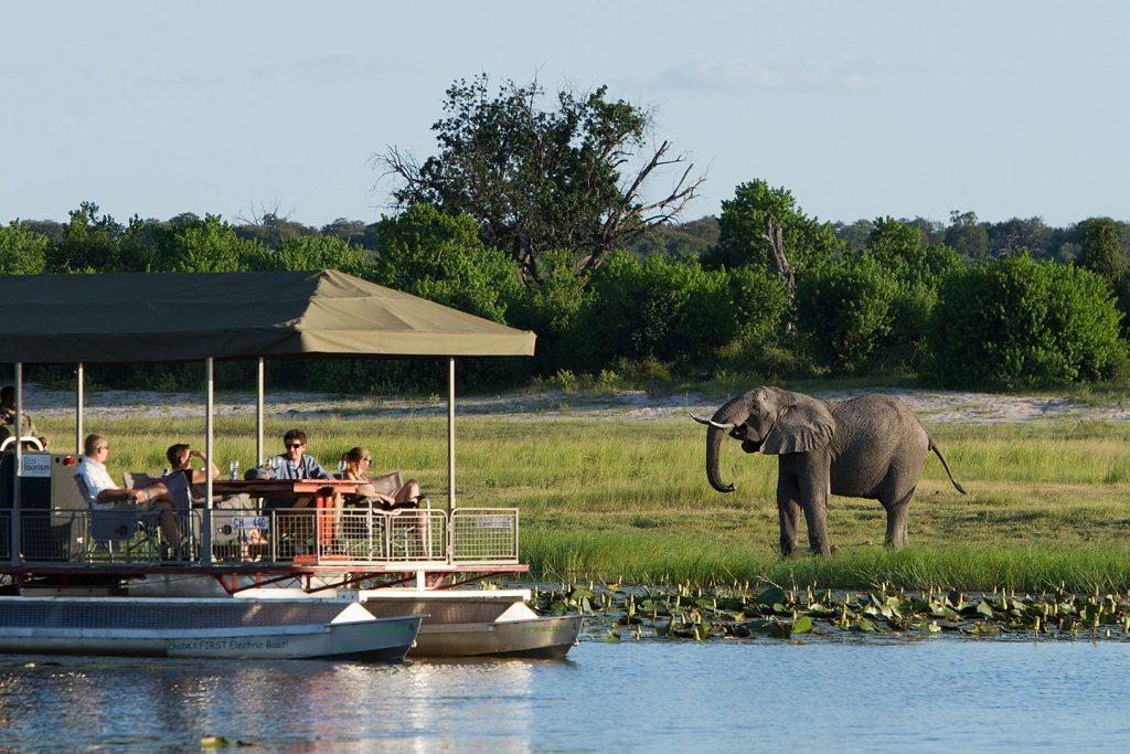 Botswana - Chobe Safari