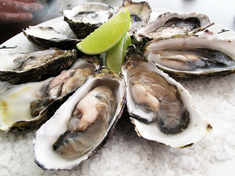 Garden Route - Oysters - Discovering Africa